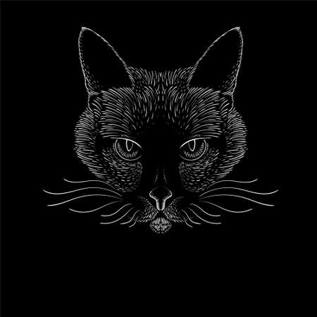 The Vector logo cat for tattoo or T-shirt design or outwear. Cute print style cat background. This hand drawing would be nice to make on the black fabric or canvas