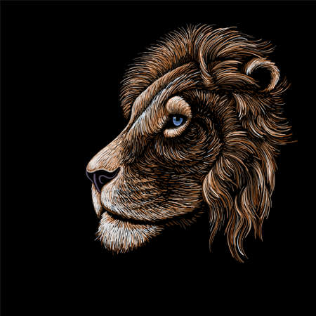 The Vector logo lion for tattoo or T-shirt print design or outwear. Hunting style lions background. This drawing would be nice to make on the black fabric or canvas