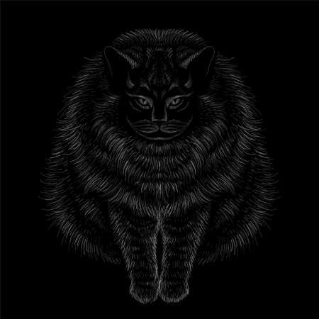 Cat vector art illustration T-shirt apparel tattoo design or outwear. Cute print style kitten background. This hand drawing would be nice to make on the black fabric or canvas. Illustration