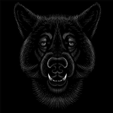 The Vector dog or wolf for tattoo or T-shirt design or outwear. Cute print style dog or wolf background. This hand drawing would be nice to make on the black fabric or canvas 일러스트