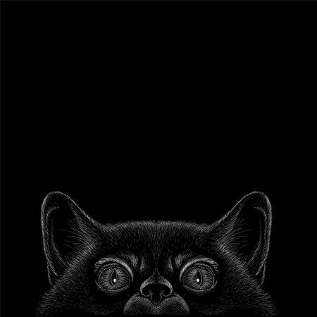 Cat vector art illustration T-shirt apparel tattoo design or outwear. Cute print style kitten background Иллюстрация