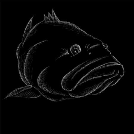 fish on black cloth for T-shirt print design or outwear. Fishing style grouper background. Иллюстрация