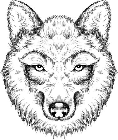dog or wolf for tattoo or T-shirt design or outwear. Cute print style dog or wolf background.