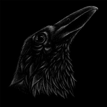 raven for tattoo or T-shirt design or outwear. Hunting style raven background. Фото со стока