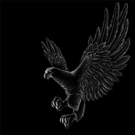 The Vector logo eagle for tattoo or T-shirt design or outwear. Hunting style raven background. This hand drawing is for black fabric or canvas