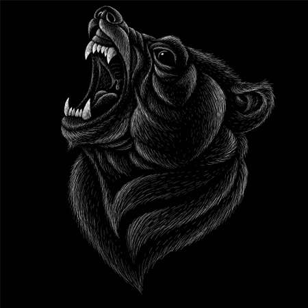 The Vector bear for T-shirt design or outwear. Hunting style bear background. This drawing would be nice to make on the black fabric or canvas