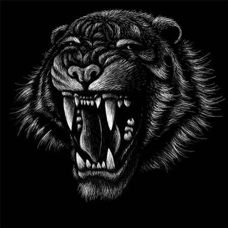 The Vector logo tiger for tattoo or T-shirt design or outwear. Hunting style big cat print on black background. This hand drawing is for black fabric or canvas