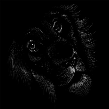 The Vector lion for tattoo or T-shirt print design or outwear. Hunting style lions background. This hand drawing would be nice to make on the black fabric or canvas