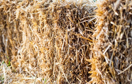 Eco clear hay bale Stock Photo