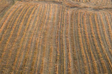 cultivated: Cultivated farmland, ready to plant Stock Photo