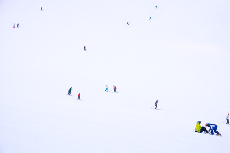 foreigner: Japanese and foreigner skiing and snowboarding . Niseko is the most famous city for ski in Japan.