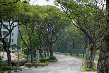 qs: SINGAPORE - SEPTEMBER 19: Green shady of Singapore in Nanyang Technological University on 19 September. NTU ranked 4th in QS World University Rankings Asia. Editorial