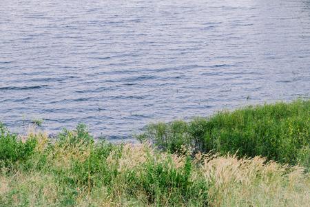 arboleda: Pequeña arboleda en la orilla del lago
