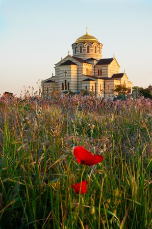 Temple and the poppy.  photo