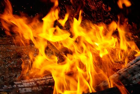 gas fireplace: Flame tips on the firewood.
