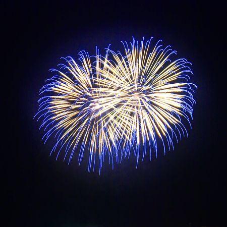salute: Salute, fireworks.