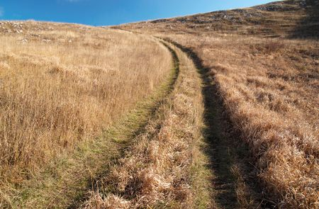 Country road through the grass field. Stock Photo - 3931836