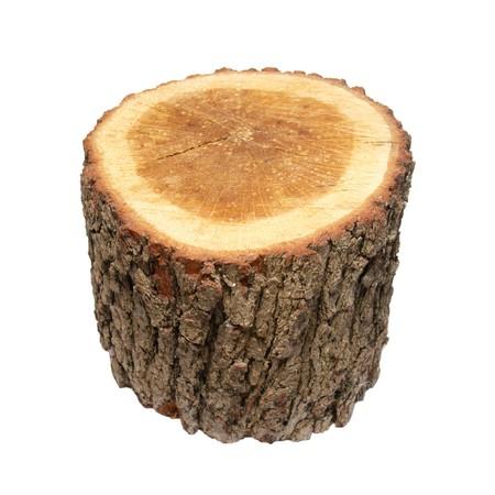 tree trunk: Wooden stump isolated on white. Stock Photo