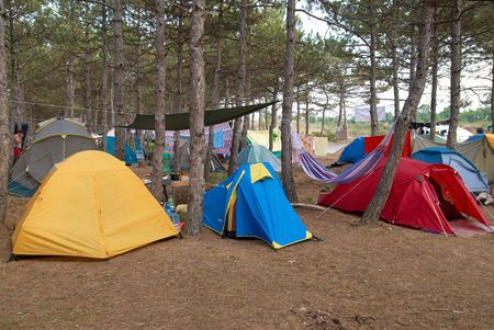 Campsite in the forest with many tents photo