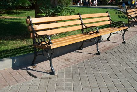 Wooden bench in the park with green grass photo