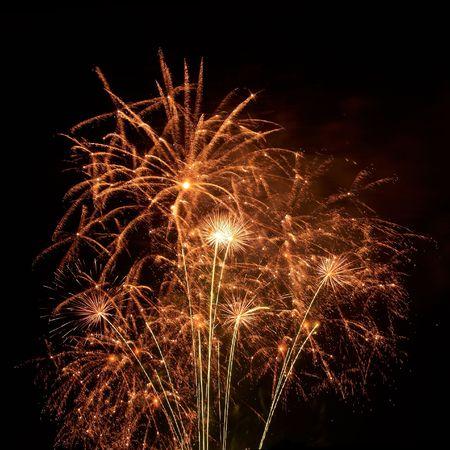 Beautiful fireworks on the black sky background Stock Photo - 6092298