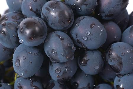 Red grapes with water drops. Studio macro shot photo