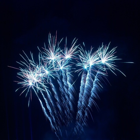 Colorful fireworks on the black sky background Stock Photo - 8422149