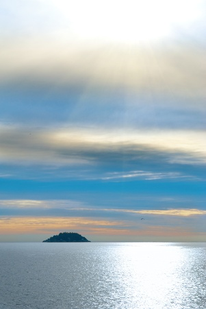 vancouver island: Small island in the sea. Sunset above the ocean