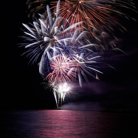 fire works: Blue and red colorful holiday fireworks on the black sky background.