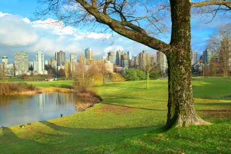Green park near sea front with skyscrapers on the background  Vancouver, Canada