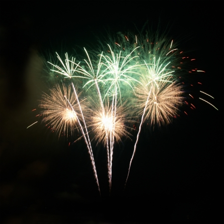 fire works: Colorful fireworks on the black sky background Stock Photo