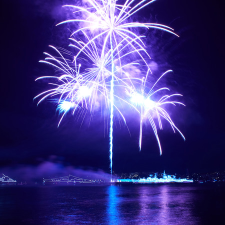 fire works: Blue colorful fireworks on the black sky background Stock Photo