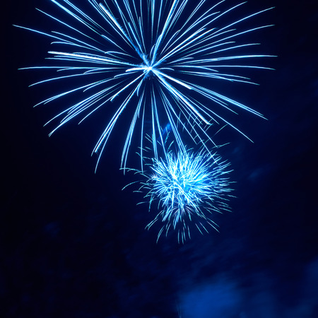 firework display: Blue colorful fireworks on the black sky background Stock Photo