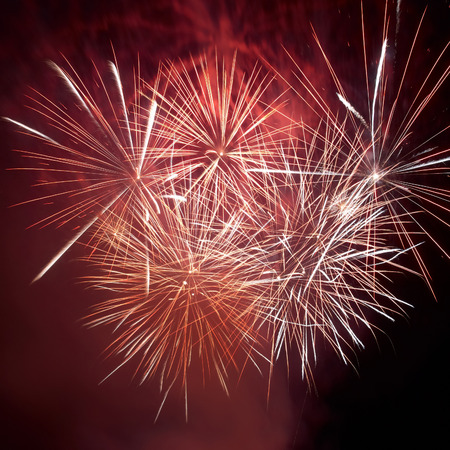 fire works: Red colorful fireworks on the black sky background. Holiday celebration.
