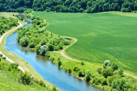 llanura: Paisaje de río, campo de trigo verde con bosque cercano y que pasa por el camino rural Foto de archivo