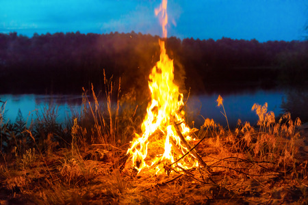 Big campfire at night in the forest under dark blue night sky with many stars Stockfoto