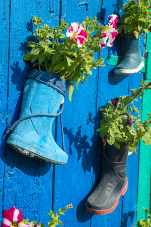 welly: Old children rubber boots with blooming summer flowers on the entrance door of a house Stock Photo