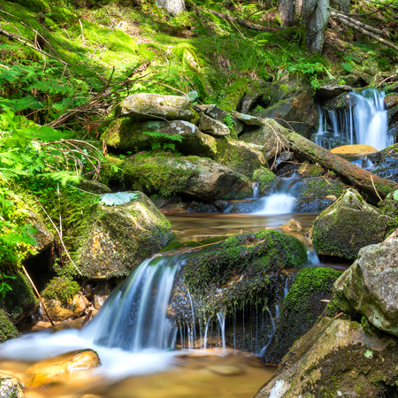 waterfall: Beautiful waterfall in the green forest. Cascade of motion water Stock Photo