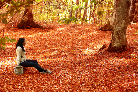Woman sitting on the bench in autumn forest with trees and orange leaves photo