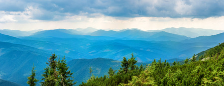 green ridge: Blue mountains covered with green forest. Panorama view of peaks ridge Stock Photo