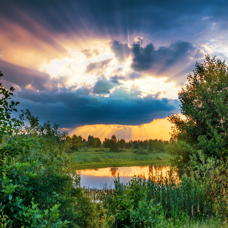 rays: Beautiful sunset above lake in the green forest