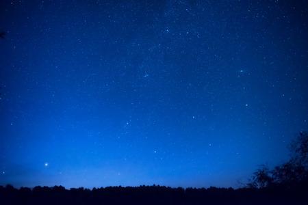 Prachtige blauwe nachtelijke hemel met veel sterren boven het bos. Milkweg ruimte achtergrond