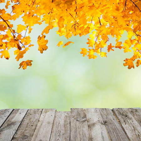 Orange fall leaves over wooden desk and abstract autumn background
