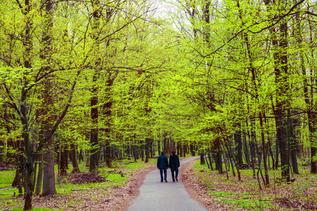couple outdoor: Two men walking in the green park