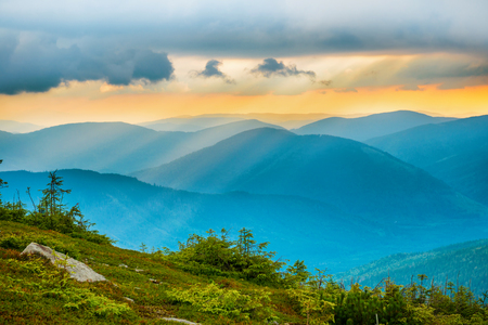 mountain sunset: Sunset over blue mountains. Green forest on background Stock Photo
