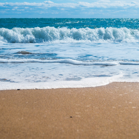 paradise beach: Blue sea and beach with golden sand. Summer vacation background