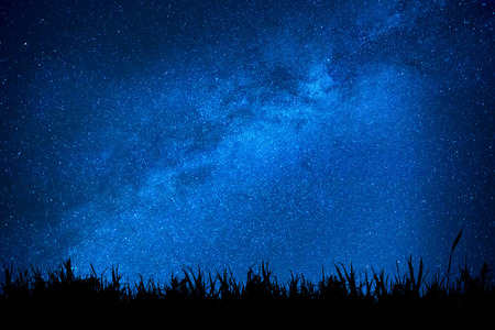 Blue dark night sky with many stars above field of grass. Milkyway cosmos background Stockfoto