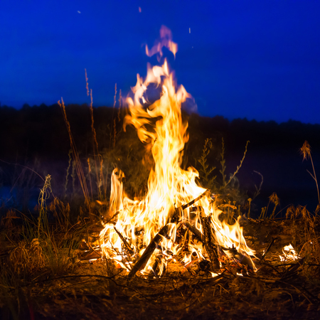 Big campfire at night in the forest under dark blue night sky with many stars Stock fotó