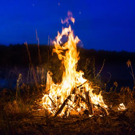 campamento: Gran fogata en la noche en el bosque bajo el cielo nocturno azul marino con muchas estrellas Foto de archivo