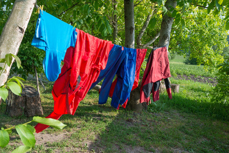 green clothes: Different color clothes hanging on line in green garden Stock Photo